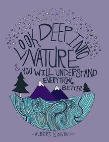 Einstein citat